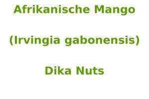 Afrikanische Mango (Irvingia gabonensis)