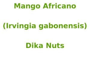 Mango Africano (Irvingia gabonensis)