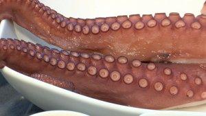 Μήπως η κατανάλωση θαλασσινών αυξάνει τη γονιμότητά μας; (Zuzanna Antecka)