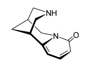 Cyztyzyna - Citisinum
