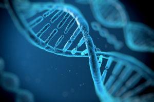 Badanie genów metabolizmu i otyłości