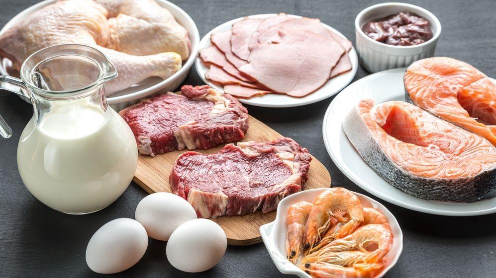 dieta z dużą zawartością białka