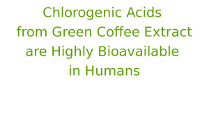 Chlorogenic Acids from Green Coffee Extract are Highly Bioavailable in Humans