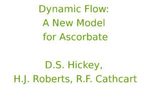 Dynamic Flow: A New Model for Ascorbate
