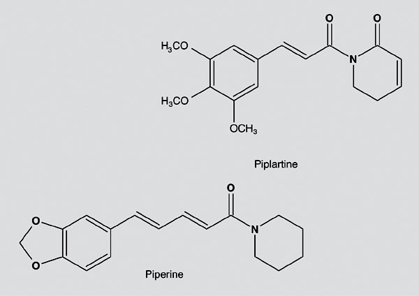 Chemical structure of piplartine and piperine