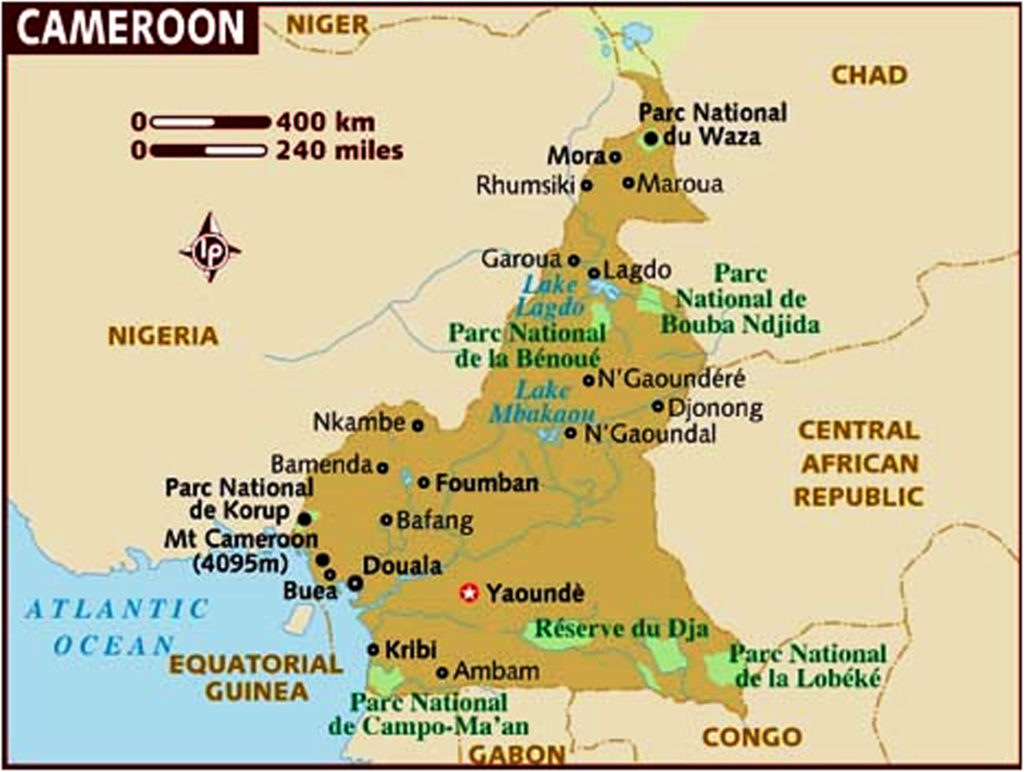 Cameroon (in brown) and its surrounding neighbours.