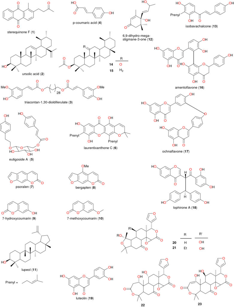 Chemical structures of taxonomic markers