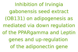 Inhibition of Irvingia gabonensis seed extract (OB131) on adipogenesis as mediated via down regulation of the PPARgamma and Leptin genes and up-regulation of the adiponectin gene