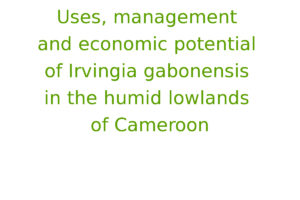 Uses, management and economic potential of Irvingia gabonensis in the humid lowlands of Cameroon