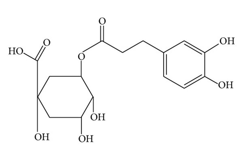 Chemical structure of chlorogenic acid (CGA)