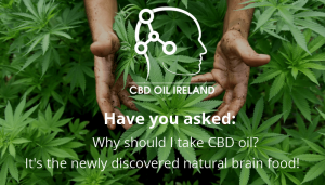 All You Need to Know about CBD oil in 2018
