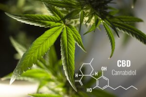 6 Magical Benefits Of CBD That You Should Know About