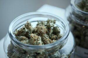 Cannabis Consumption Methods: What Fits Better For Your Wellness Regime?