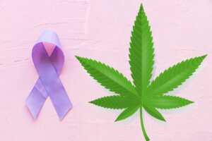 Epilepsy And Cannabis: How Can CBD Help Remedy The Condition?